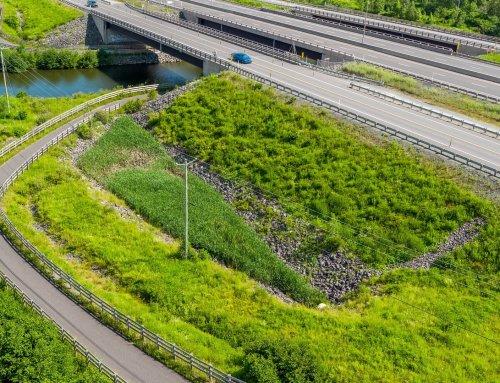 Suivi faunique des bassins de captation des eaux pluviales pour le projet de construction de l'autoroute 85